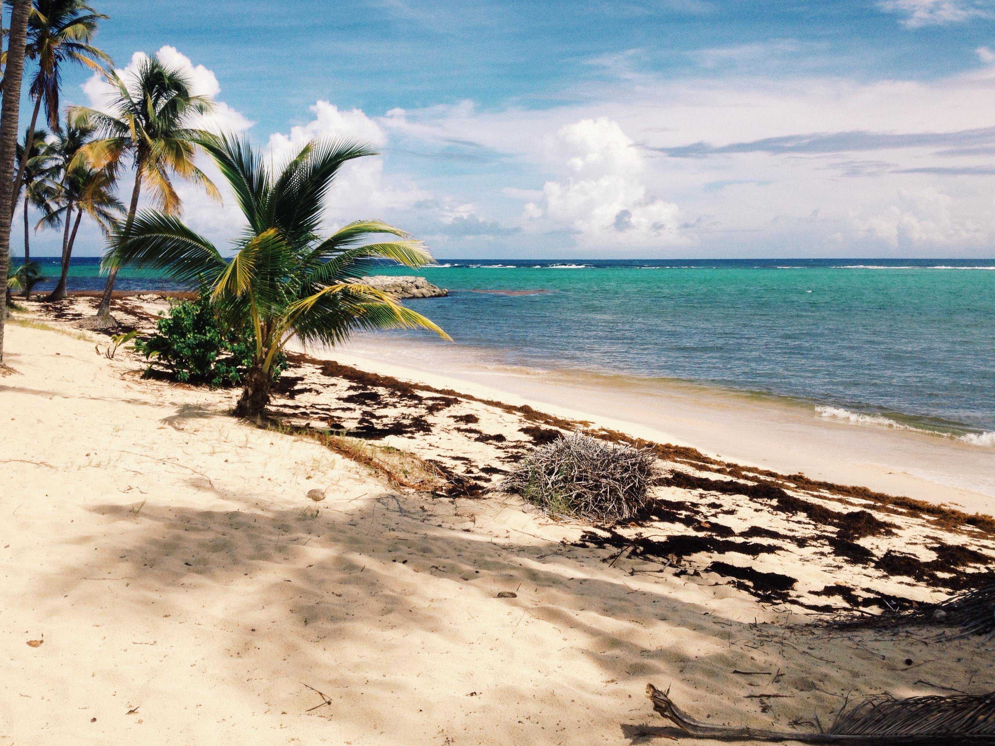 0cf72f5fa5eab7 Marie-galante, Caribbean sea | eric röttinger | photography ...